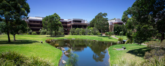 UNIVERSITY OF WOLLONGONG AUSTRALIA Cover Image